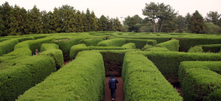 Only the really skilled can really navigate the maze of IaaS